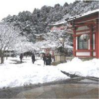 早春の京都吟行会(祗園・鞍馬・貴船ほか)