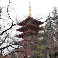 31-2-9 新年俳句大会